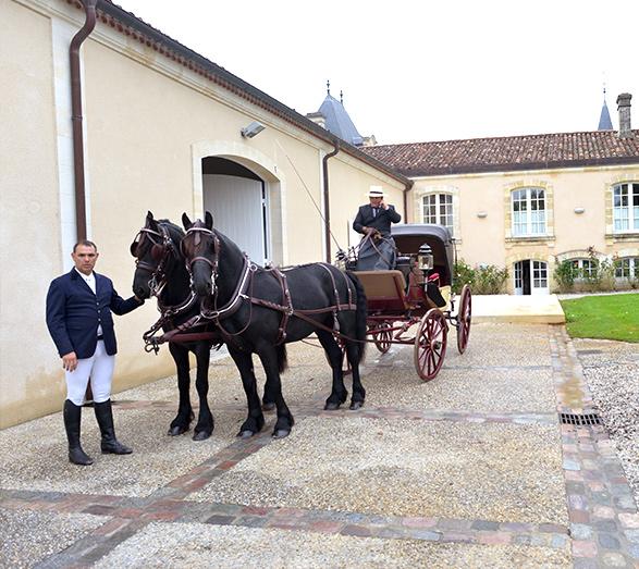 chateau_marojallia_mariage10